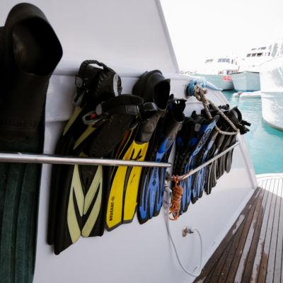 Nikola Spasic preparation diving umlaut