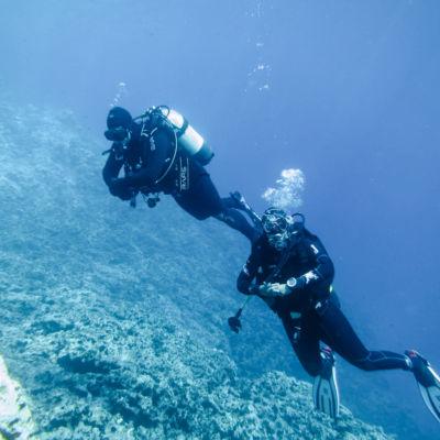 Nikola Spasic in underwater heaven umlaut